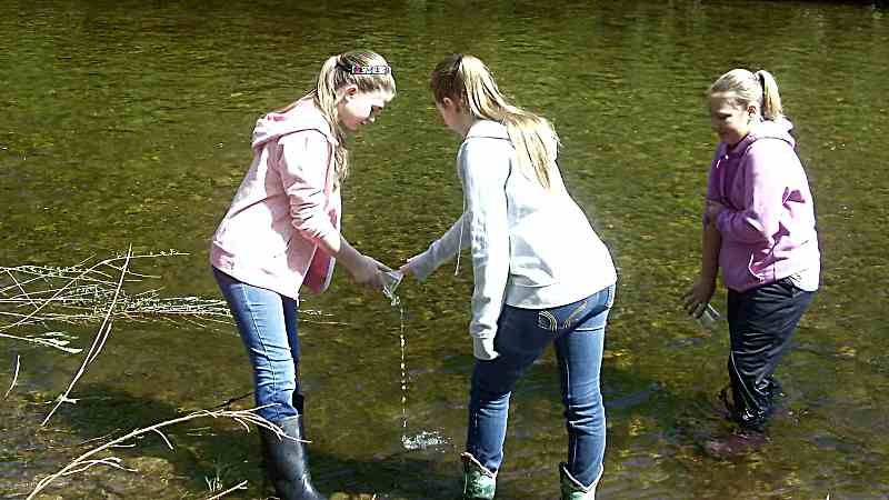 Students stocking salmon and brook trout